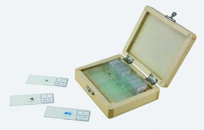 Celestron 44410 Mikroskop Slayt Seti - 25 parça - Thumbnail