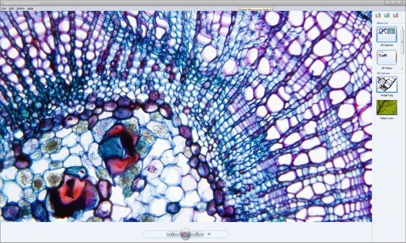 Celestron 44421 Gelişmiş Mikroskop Görüntüleyici
