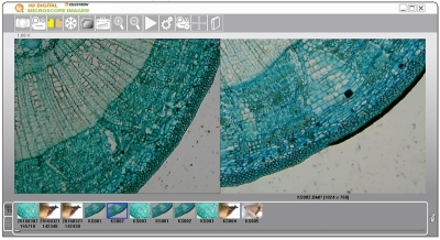 Celestron 44422 5MP HD Dijital Mikroskop Görüntüleyici - Thumbnail